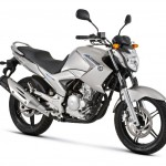 2013 Yamaha YS250 Fazer BlueFlex