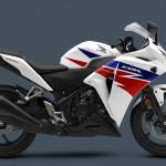 2013 Honda CBR250R_2