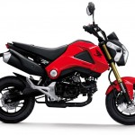 More Images of the 2013 Honda MSX125_1