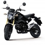 More Images of the 2013 Honda MSX125_10