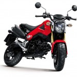 More Images of the 2013 Honda MSX125_11
