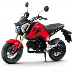 More Images of the 2013 Honda MSX125_14