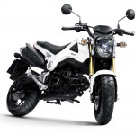 More Images of the 2013 Honda MSX125_16