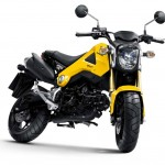 More Images of the 2013 Honda MSX125_19