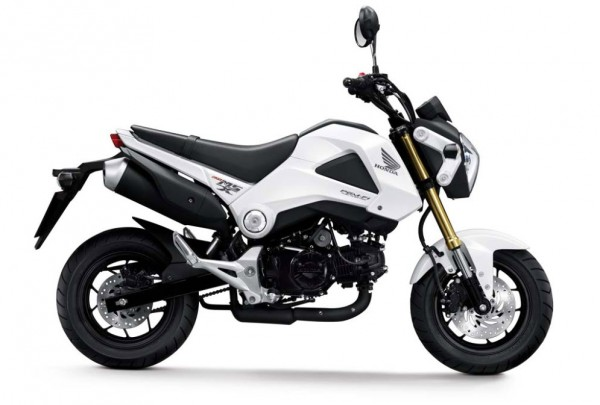 More Images of the 2013 Honda MSX125_2