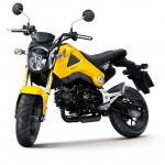 More Images of the 2013 Honda MSX125_20