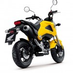 More Images of the 2013 Honda MSX125_21