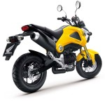 More Images of the 2013 Honda MSX125_22