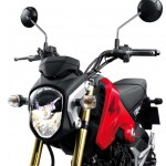 More Images of the 2013 Honda MSX125_23