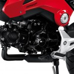 More Images of the 2013 Honda MSX125_24