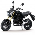 More Images of the 2013 Honda MSX125_5