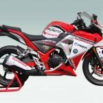 ZJMM R12, Honda CBR250R Look aLike_1