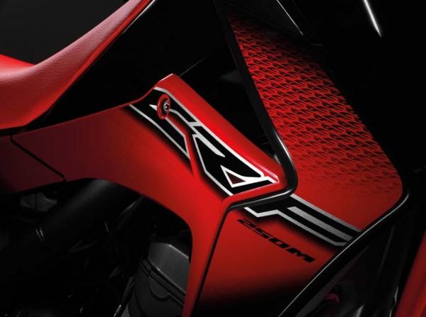 2014 Honda CRF250M Supermoto Decal