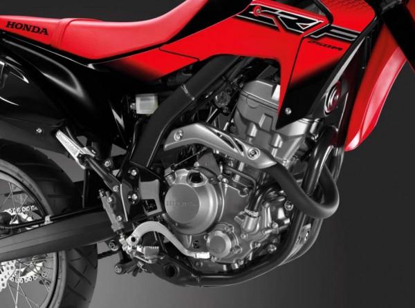 2014 Honda CRF250M Supermoto Engine