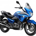Official Pictures of the 2014 Suzuki GW250S