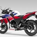 2014 Honda CBR300R_3