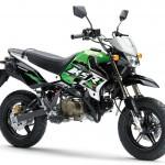 2014 Kawasaki KSR Pro