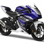 Yamaha Reveals the R25 250cc Sportbike Prototype