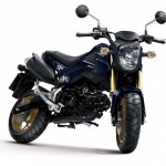 2014 Honda MSX125/Grom New Colors
