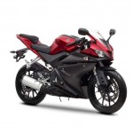 2014 Yamaha YZF-R125 Europe-Specs Anodized Red_5