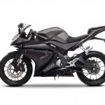 2014 Yamaha YZF-R125 Europe-Specs Mat Grey_1