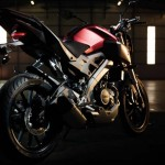 2014 Yamaha MT-125 Anodized Red_4