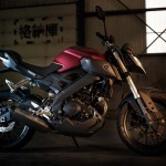 2014 Yamaha MT-125 Anodized Red_6