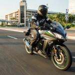 2015 Kawasaki Ninja 300 ABS_3