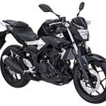 2015 Yamaha MT-25 Black Strike