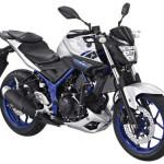 2015 Yamaha MT-25 Silver Blue