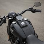 2016 Harley-Davidson Fatboy S Black
