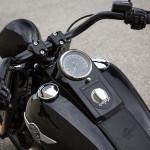 2016 Harley-Davidson Fatboy S Fuel Tank