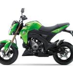 2016 Kawasaki Z125 Green