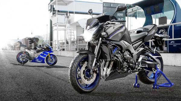2013 Yamaha FZ8_5