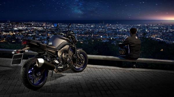 2013 Yamaha FZ8_8
