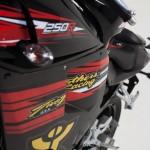 NAZA Blade TBR 2013 Edition 250cc_8
