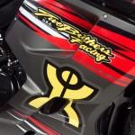 NAZA Blade TBR 2013 Edition 250cc_9