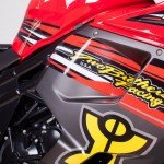NAZA Blade TBR 2013 Edition 650cc_6