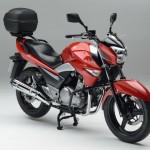 Suzuki Inazuma 250 Street Accessory Pack