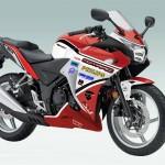 ZJMM R12: Honda CBR250R Look aLike