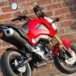 2014 Honda Grom Pearl Red_3