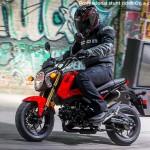 2014 Honda Grom Pearl Red_4