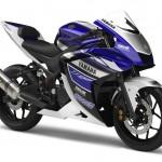 Yamaha Reveals the R25 250cc Sportbike Prototype