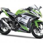 2015 Kawasaki Ninja 250