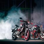 2015 Yamaha MT-07 Moto Cage