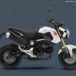 2015 Honda Grom Pearl White
